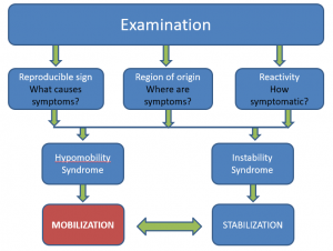 Joint Mobility Examination