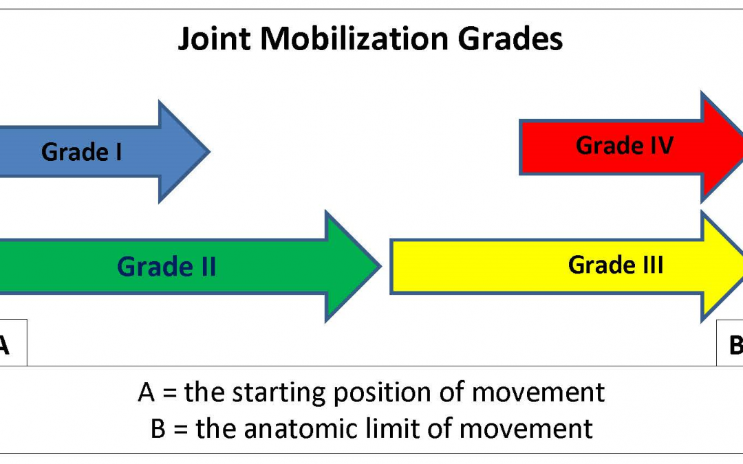 Joint Mobilizations